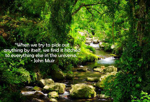 John Muir quote: When we try to pick out anything by itself, we find it hitched to everything else in the universe